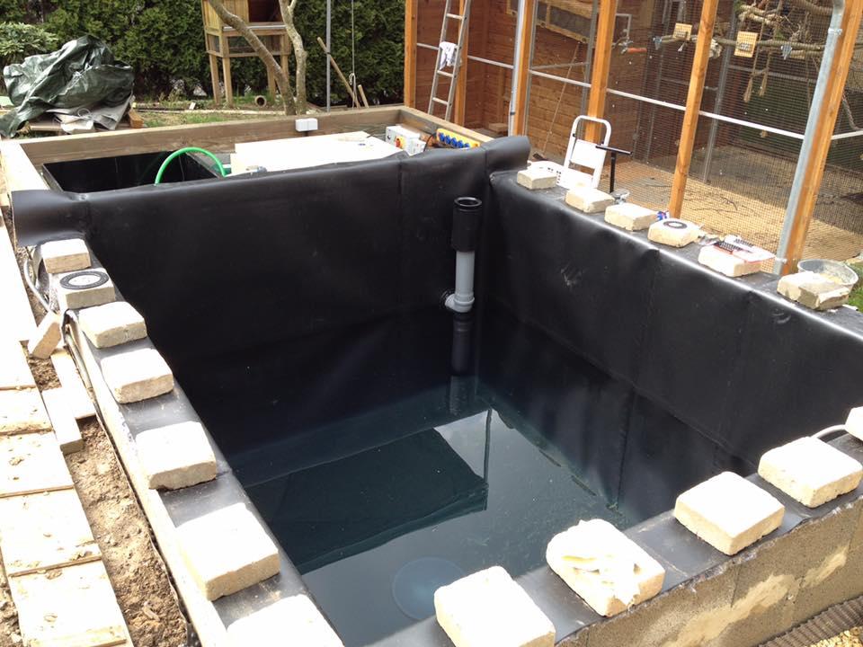 Projekt koi teich 20m3 aquatec teichbau equipment koi for Koi equipment